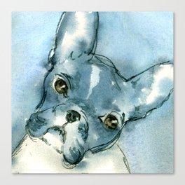 French Bull Dog Canvas Print