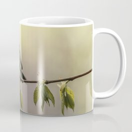 Yellow and blue tit on the branch Coffee Mug