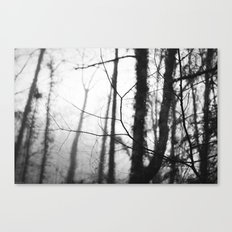 Quiet Rain II Canvas Print