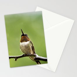 Ruby Throated Hummingbird II Stationery Cards