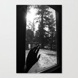 White Touch Canvas Print