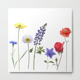 Flowers isolated on white background. Digital painting Metal Print