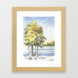 Lake Simcoe, Briars Association Beach, January Framed Art Print