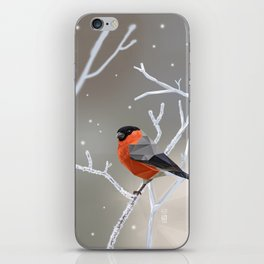 Safe transitions! // (polygonal bull-finch) iPhone Skin