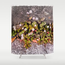 Japanese Knotweed Shower Curtain
