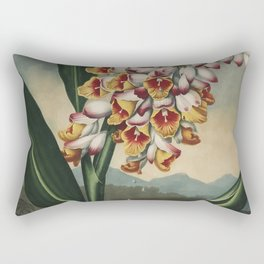 Henderson, Peter C. (d.1829) - The Temple of Flora 1807 - Nodding Renealmia Rectangular Pillow