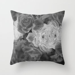 Grey Sentinels Throw Pillow