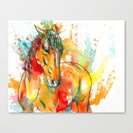 The Spirit of a Horse Canvas Print