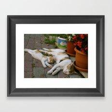 Sleepy mom and kitty Framed Art Print