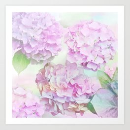 Painterly Hydrangea flowers on a pastel background Art Print