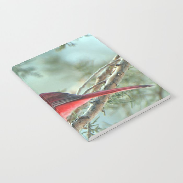 Dreamy Morning (Northern Cardinal) Notebook