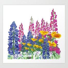 Mountain Wildflowers Art Print