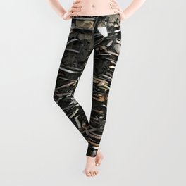 Staples and Nails it! Leggings