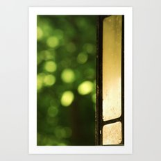 Outdoor Bokeh Art Print