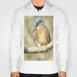 Stunning Kingfisher In Watercolor Hoody