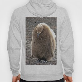 King Penguin Chick Hoody