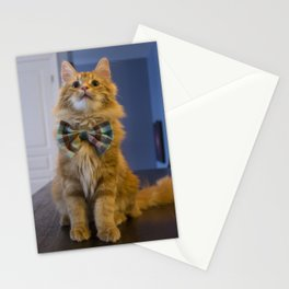 Sir Pudding of Butterscotch Stationery Cards