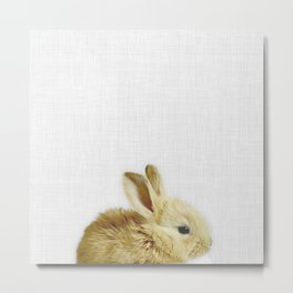 Sweet Bunny Metal Print