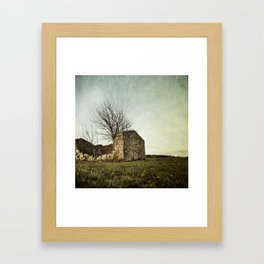 not just naked branchs and falling stones Framed Art Print