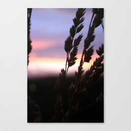 Summer Breeze. Canvas Print