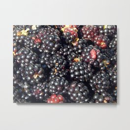 Blackberries berry still life and texture composition Metal Print