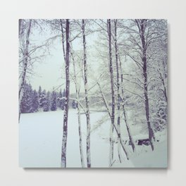 Frozen river Metal Print