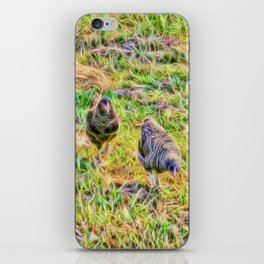 Hens on the farm iPhone Skin