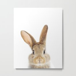 Bunny Print by Zouzounio Art Metal Print