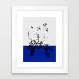 blue flower plant nature Framed Art Print