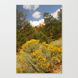 Scenes around Bryce Canyon Canvas Print