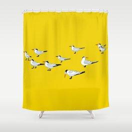 Cocoa Beach Seagulls Shower Curtain