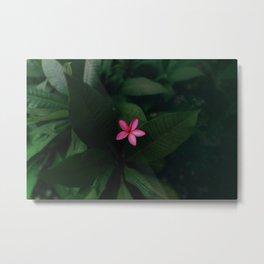 Tropical Jungle Flower Metal Print
