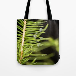 Spruce branch with drops Tote Bag