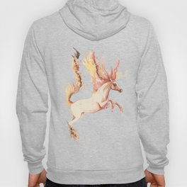 Fire and water Hoody