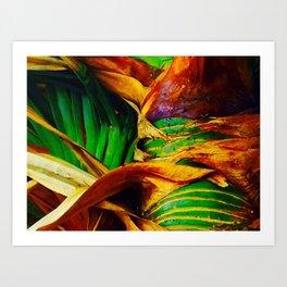 Pandanus in the Tropics Art Print
