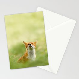 The Mindful Fox Stationery Cards