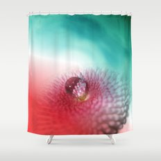 Bellis on red and turquoise Shower Curtain