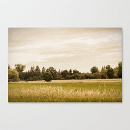 Field with Trees Canvas Print