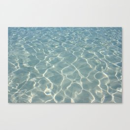 Dive Right In.... Canvas Print