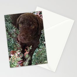 Puppy in the Hemlocks Stationery Cards