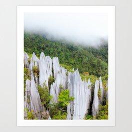 Pinnacles limestone formation in Gunung Mulu national park Borneo Malaysia Art Print
