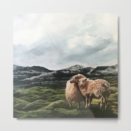 Sheep in moss fields Metal Print