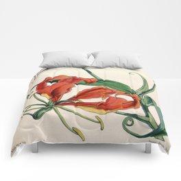 Gloriosa superba Comforters