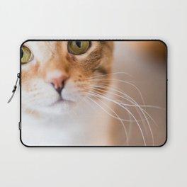 Kitty Cat Laptop Sleeve