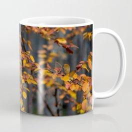 two Coffee Mug