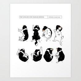 Cavalier King Charles Spaniel Sleep Study Art Print. Black & Tan. Illustrations Art Print