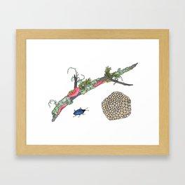 Lichen and Blue Fungus Beetle Framed Art Print