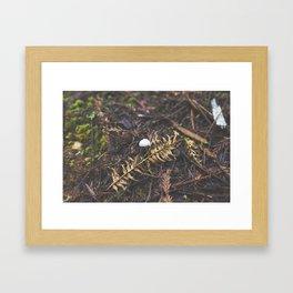 White Mushroom on Forest Floor Framed Art Print