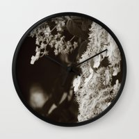 climbing Wall Clocks featuring Climbing hydrangea by Christine baessler