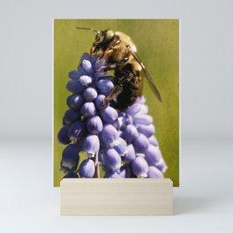 Mine!  says bee Mini Art Print